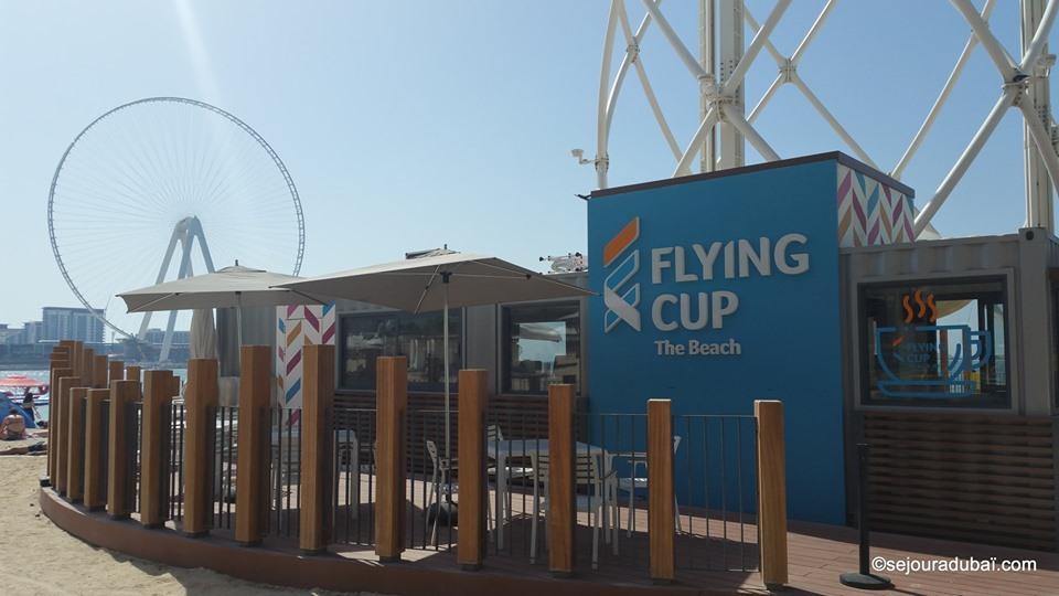 Flying cup Dubaï expérience